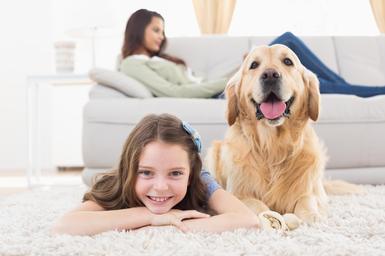 Kinderalimentatie groot vraagstuk voor ouders - Scheidingsplanner Hilversum | Bilthoven | Soest | 't Gooi