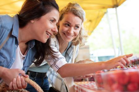 Ontbinden geregistreerd partnerschap en alimentatie - Scheidingsplanner Hilversum - Bilthoven - Soest - Het Gooi